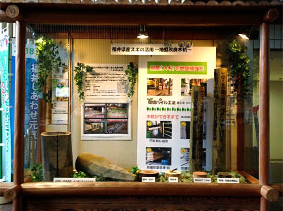 福井県庁1Fにて木杭の展示を開催中!